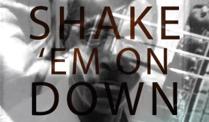 Shake 'Em On Down: The Blues According to Fred McDowell